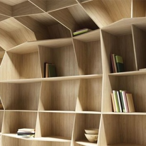 Bookcase in Olmo Mercurio Alevè